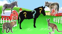 帮助斑马等6种动物找到正确的位置