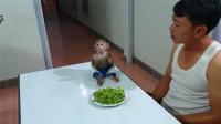 这小猴子太活泼了,吃了几口青菜就要去玩