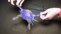 大梅赶海新工具?铁耙搂到紫色的螃蟹,带回家煮着吃,真香!