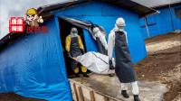 致死率高达90%的灾难,埃博拉病毒大解密!