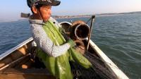 阿雄出海放下三袋渔网,抓回好货不卖屯在鱼缸,等大风天全部出手