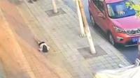 20岁女孩从云南一宾馆4楼跳下:事前曾遭男友朋友拖拽