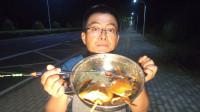 海口没有螃蟹抓?渔夫废弃养殖场走一圈,后果是螃蟹吃不完了