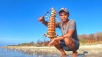 农村小哥早晨赶海,沙滩中钓皮皮虾,这么大的皮皮虾很少见哦