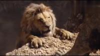 最新好莱坞大作《狮子王》真人版! 时隔25经典神还原, 满满回忆杀