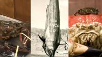 五种被人类捕获的巨大生物:原来世界还有这么大的龙虾和螃蟹