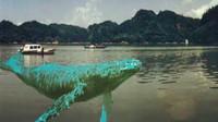 福建大金湖水怪之谜,几百万条鱼离奇失踪,究竟为何?