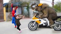 越看越惊险!萌宝小萝莉怎么遇见大象了?可是大象为何一直跑?学色彩英语儿童早教益智游戏玩具