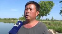 庆云:大面积死鱼漂浮水面,导致亏损30万,村民与施工方产生争议