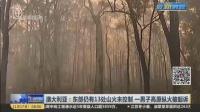 视频|澳大利亚: 东部仍有13处山火未控制 一男子高原纵火被起诉