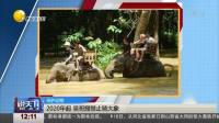 2020年起 吴哥窟禁止骑大象  说天下 20191117 高清版