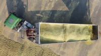 大型农场收割玉米