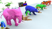 亲子早教动画马大象寻找自己的鞋子学颜色