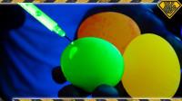 浸泡过白醋和荧光材料的鸡蛋,真的可以发光吗?一起来见识下!