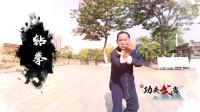 武术大师演示形意拳,如果没点水平,还真做不出来这些技巧!