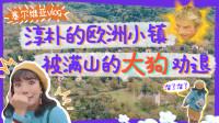对中国人超友好的欧洲小镇,满山都是大狗?! 妹子吓得拔腿就跑