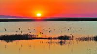 中国最可惜的湖泊:曾经是巨大的植物乐园,如今却已经将近干涸!