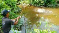 龙头寺附近可以钓鱼的农家乐