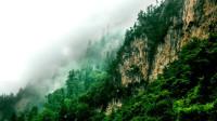 【原创】官鹅沟看溪涧流泉 青藏高原东部边缘的美景 甘肃宕昌游