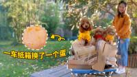 主人卖废纸箱给3只狗狗买鸡腿,没想到卖完一整车才够买个蛋!
