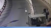 北京:仙鹤在大街上散步 司机被挡下车拍照