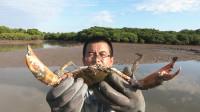 """阿锋找到个""""变态""""螃蟹洞,渔夫埋头就挖,这螃蟹也太大了吧"""