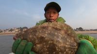 阿雄花大几千购置新渔网,出海竟抓到超大皇帝鱼,两只手才能抓牢