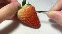 无聊老外把草莓籽全都拔了,我竟然看了10遍!过程太解压了!