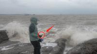 强风天赶海,大批的海货被卷上岸边,猪猪看到大货高兴坏了