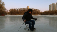 VLOG:东北佳木斯小伙,零下十五度在冰面上滑爬犁,天黑都不肯走!