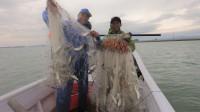 阿烽带阿雄发大财了,去敲鱼放一网就有几十斤,今天大赚两千多