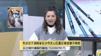《中国垂钓周刊》长沙荷叶塘垂钓基地作钓指南