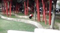 上海静安雕塑公园