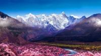 《最美中国 大有可观》 第一集 林芝 桃源撷梦