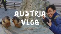 蜜月旅行vlog之大锺山看土拨鼠