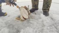 老外在冰面上钓鱼,以为鱼上钩了,拉上来一看太高兴了!