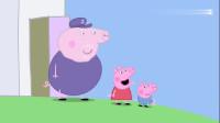小猪佩奇:猪奶奶看着猪爷爷,一箱子的瓶中船,很想把它们丢掉!