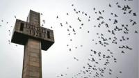 【大屠杀死难者国家公祭日!南京全城警报响起为遇难同胞默哀】