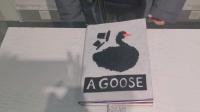 【立体书】A GOOSE,作业