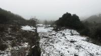 错过了下雪的时刻,留住这一山的雪景