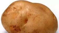 美女看到一块长满毛的马铃薯,下一秒毛居然动了,吓得赶紧后退