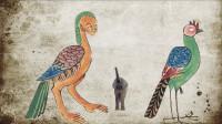 500年前,西班牙人绘制了一本画册,大量神兽图与山海经相似