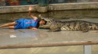 女子给鳄鱼喂食,意想不到的事情发生了,镜头记录全过程