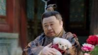 """太子爷和他的""""狗儿子""""日常搞笑集锦,这狗可谓是""""狗生赢家""""!"""