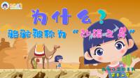 《跟着子樱学画画》动物小常识系列,骆驼为什么被称为沙漠之舟,你知道骆驼可以几天不吃食物吗