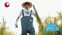 青春旅社:王源小可爱体验割水稻,这架势一看就没干过农活,怪生疏的!