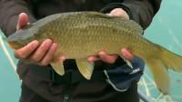 乌鲁木齐人民公园钓鱼