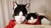 主人化猫仿妆,本猫一看惊了,猫:我???