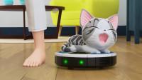 甜甜私房猫:猫咪是来捣蛋的