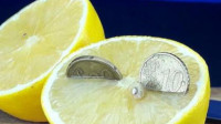 柠檬究竟有多酸?老外插入3颗硬币,这效果出人意料